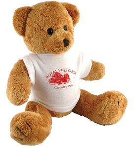 10 inch Robbie Bear & T Shirt