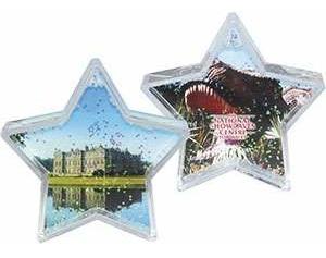 Fully Customised Snow or Glitter Shaker (Star)
