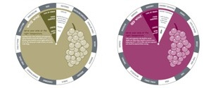 Red & White Wine Data Disc