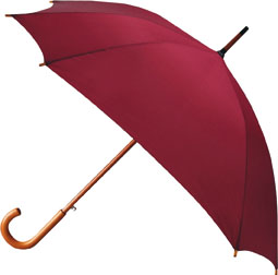 Automatic square umbrella